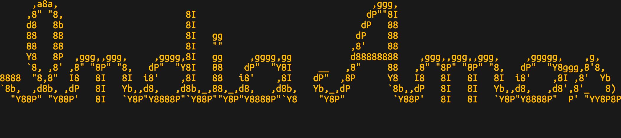 "ASCII art that reads ""India Amos"""